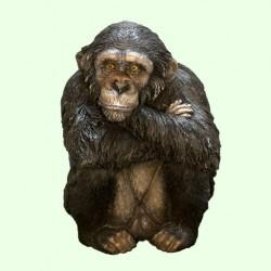 Копилка Шимпанзе