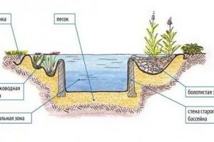 Создаем водоем в саду своими руками