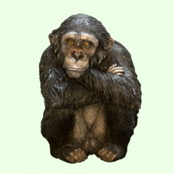 Копилка Шимпанзе (М)
