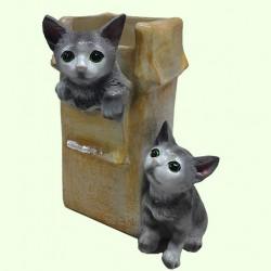 Подвазонник Коробка с котятами