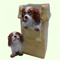 Подвазонник Коробка со щенками
